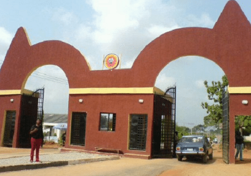 auchi poly gate